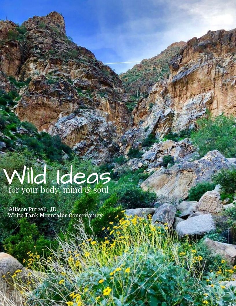 Wild Ideas for Your Body, Mind & Soul